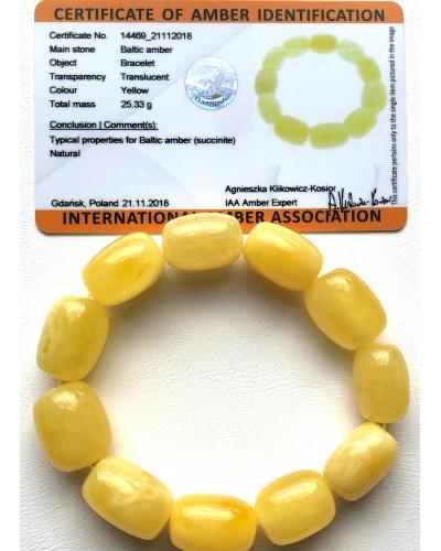 Natural barrel shape amber bracelet(Certificate included)