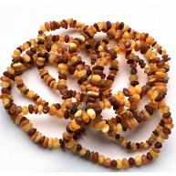 10 Raw Baltic amber small chip bracelets