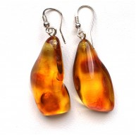 Natural Shape Baltic Amber Earrings 7g