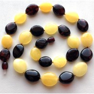 Multicolor Baltic amber short necklace -AN2248