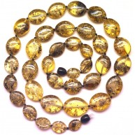 Button shape  Baltic amber long necklace