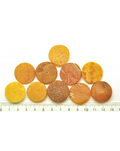 10 Raw  natural Baltic amber button shape beads