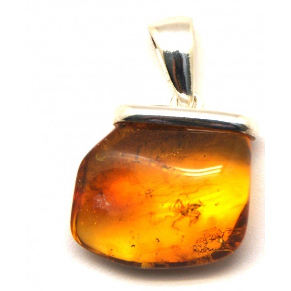 Amber with insects | Natural shape Baltic amber pendant with insect