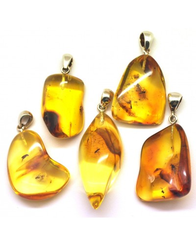 Lot of 5 natural shape Baltic amber pendants with insects