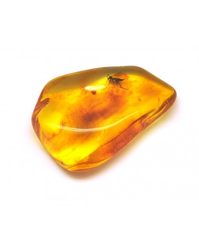 Baltic amber stone with insects 11 g.