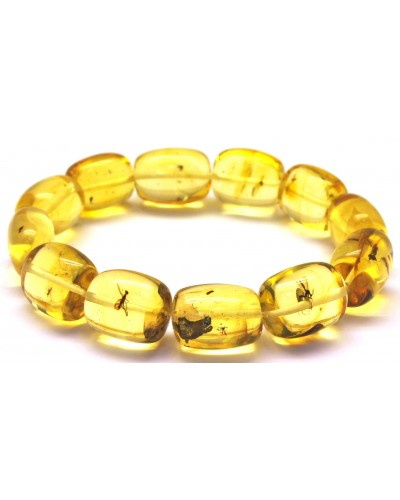 Barrel shape Baltic amber bracelet with insects