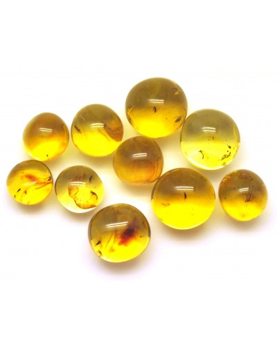 Lot of 10 Baltic amber  baroque beads with insects