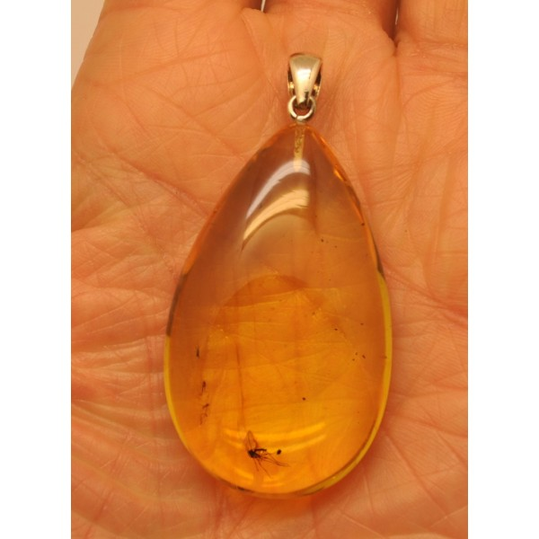 Amber drop pendant with insects