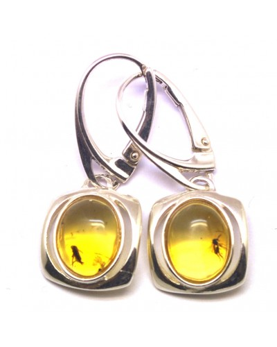 Baltic amber earrings with insects