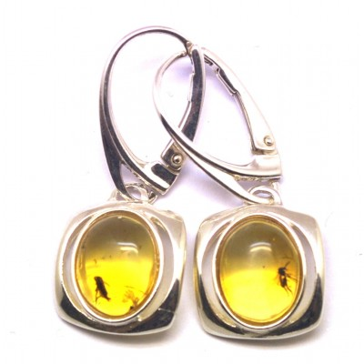 Baltic amber earrings with insects-AI0882