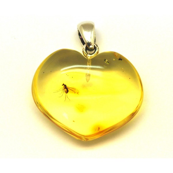 Heart shape Baltic amber pendant with insect-AI0880