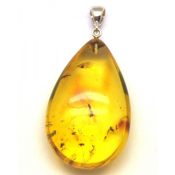 Amber with insects | Amber drop pendant with insects