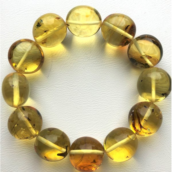 Genuine BALTIC AMBER Bracelet with FOSSIL INSECTS-AI0920