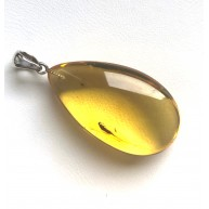 Natural Baltic Amber Drop Pendant With Insect 9,4g