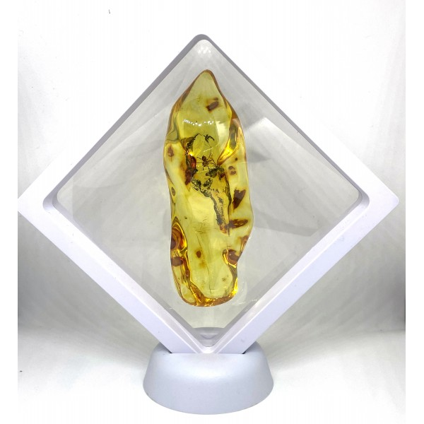 Large Amber Stone With Inclusion 32 g -