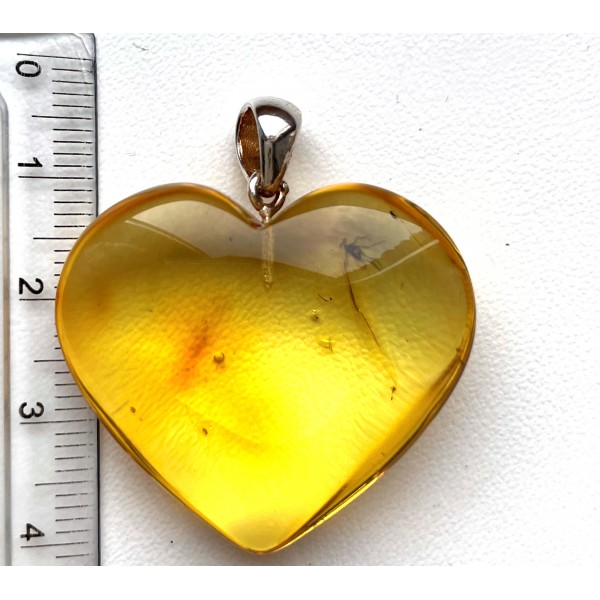 Genuine Baltic Amber Silver Gold Plated Pendant With Fossil Insect Fly EXCLUSIVE