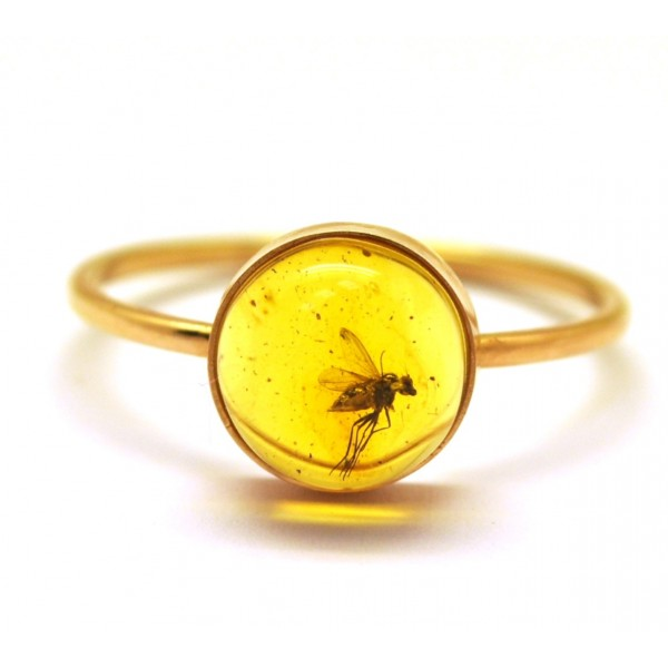 Baltic amber gold ring with insect from online baltic amber jewelry amber rings baltic amber gold ring with insect mozeypictures Gallery