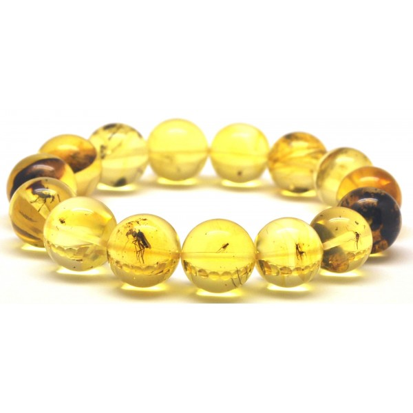 Amber with insects | Round beads Baltic amber bracelet with insects