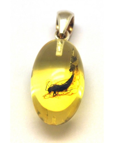 Amber olive shape pendant with insect