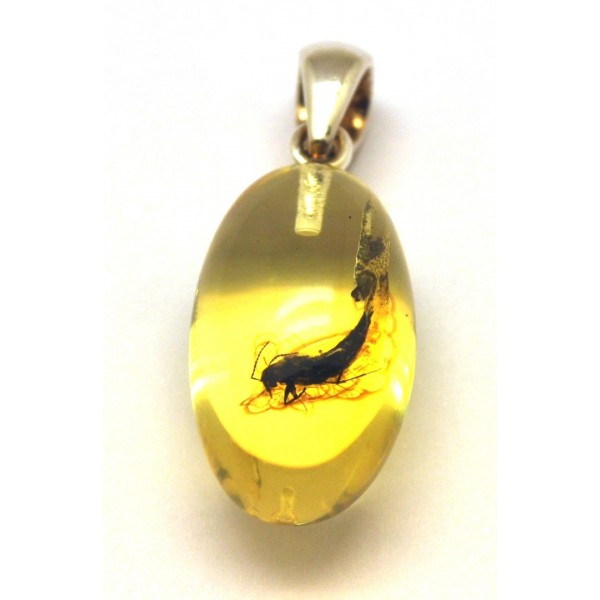 Amber with insects | Amber olive shape pendant with insect