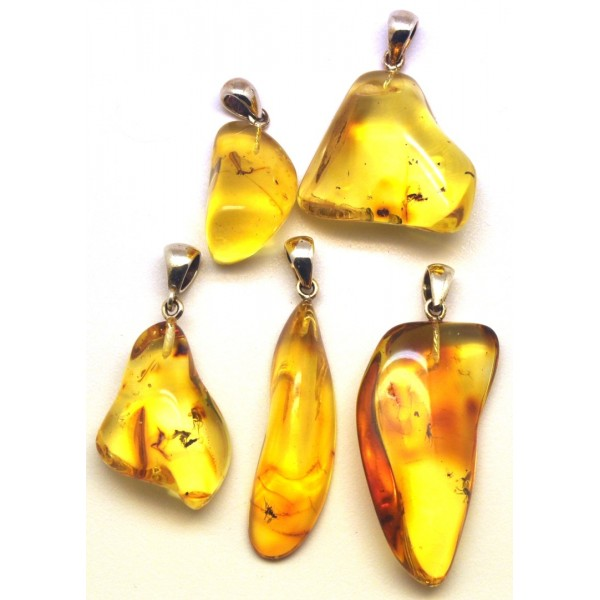 Amber with insects | Lot of 5 natural shape Baltic amber pendants with insects
