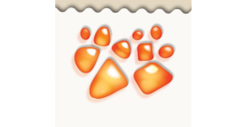 Loose amber