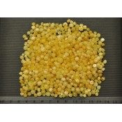Drilled Baltic amber baroque beads 50 g .