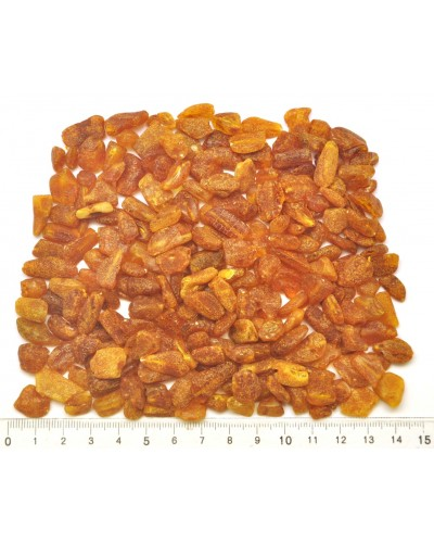Raw drilled Baltic amber pieces 70 g .