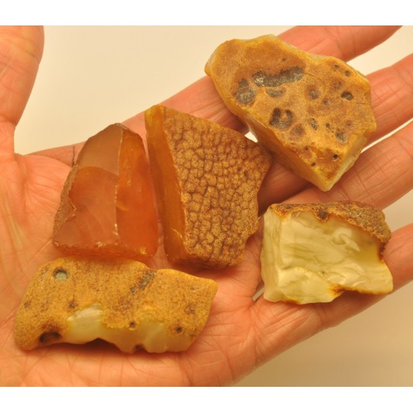Lot of 5 raw Baltic amber stones-RA0296