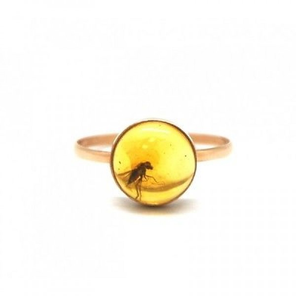 Baltic amber gold ring with insect-AG231
